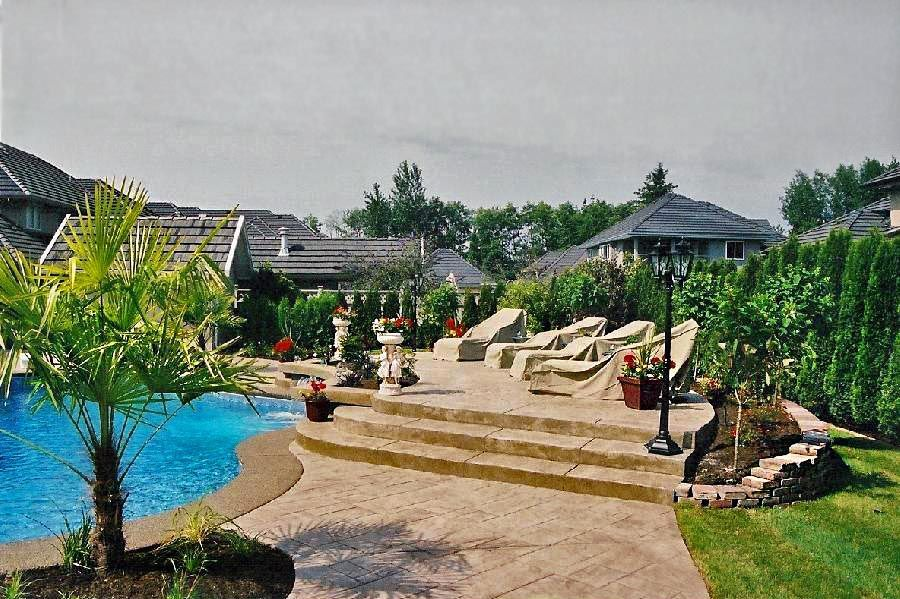 view of a backyard with pool and trees