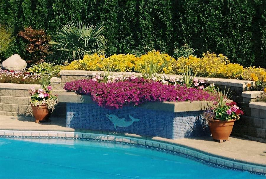 pool side with lots of flowers